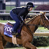 Code of Honor Breeders' Cup Churchill Downs Chad B. Harmon