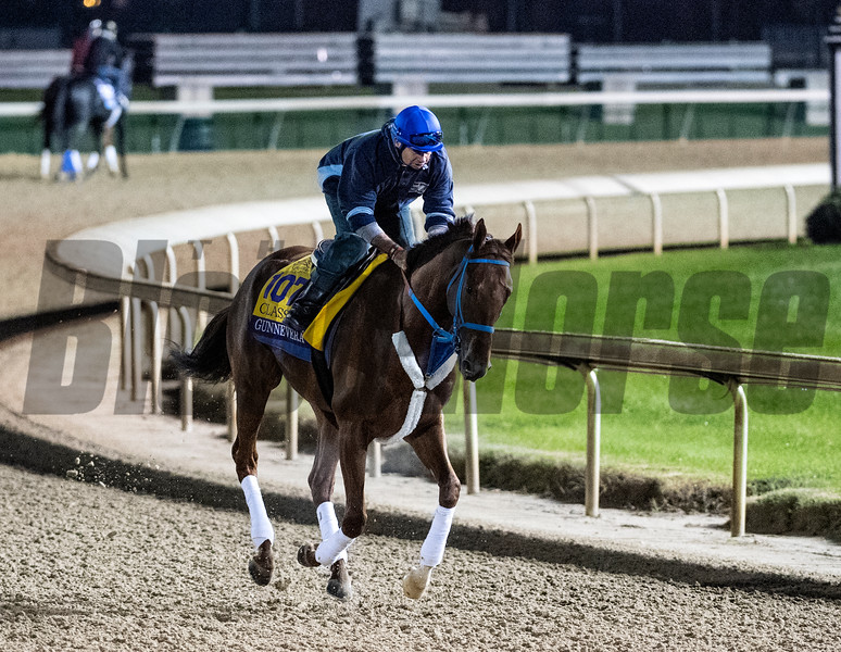 Gunnevera out for morning exercise Tuesday Oct. 30, 2018 at Churchill Downs in preparation for the 2018 Breeders' Cup in Louisville, KY.  Photo by Skip Dickstein