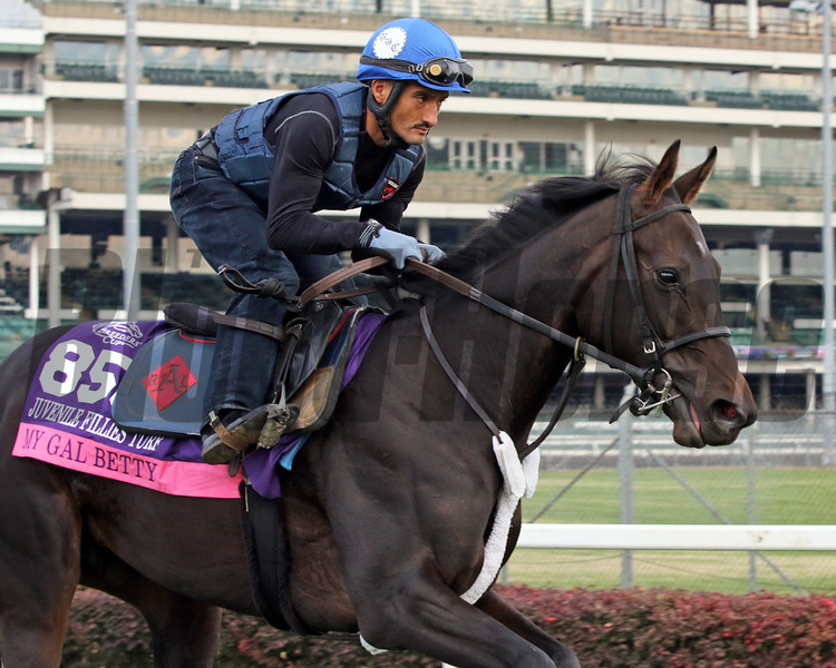 My Gal Betty Breeders' Cup Churchill Downs Chad B. Harmon