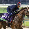 Lightning Spear Breeders' Cup Churchill Downs Chad B. Harmon