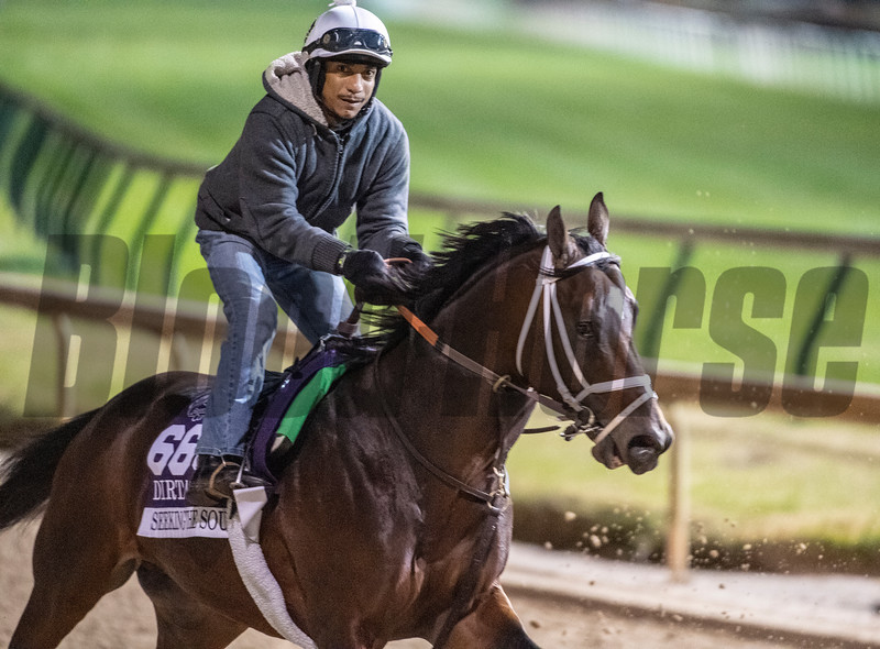 Seeking the Sort on track at Churchill Downs on Breeders' Cup week Monday October 29, 2018 in Louisville, KY.  Photo by Skip Dickstein