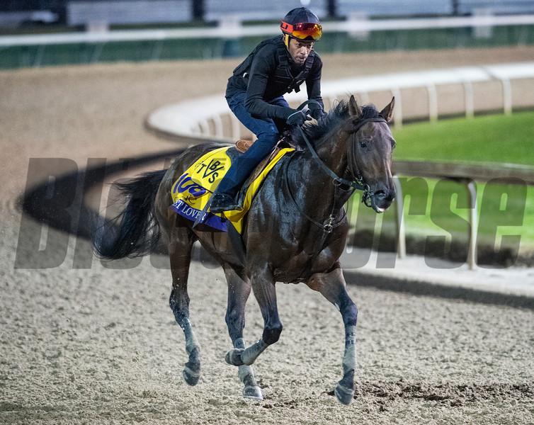 Discreet Lover out for morning exercise Tuesday Oct. 30, 2018 at Churchill Downs in preparation for the 2018 Breeders' Cup in Louisville, KY.  Photo by Skip Dickstein