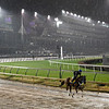 Gunnevera gallops through rain and mud this morning Thursday Nov. 1, 2018 at Churchill Downs the home of the 2018 Breeders' Cup in Louisville, KY.  Photo by Skip Dickstein