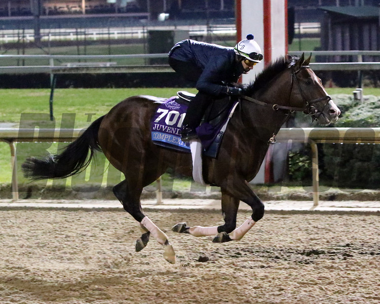 Complexity Breeders' Cup Churchill Downs Chad B. Harmon