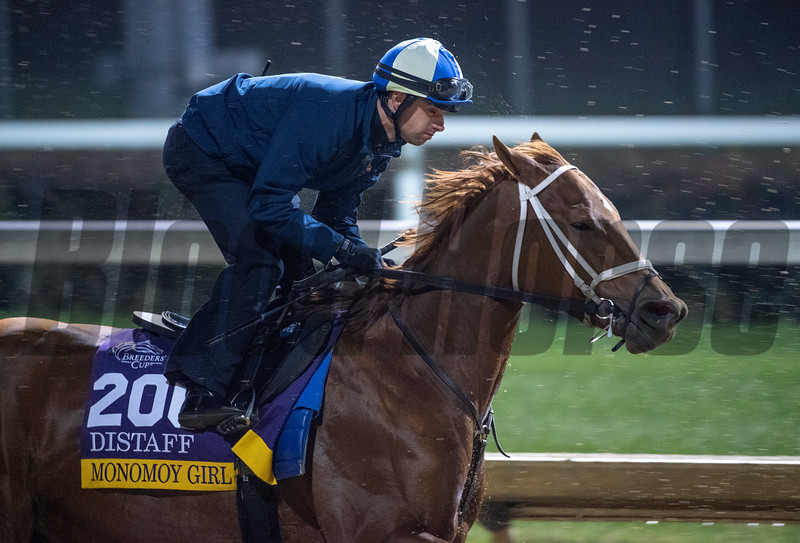 Monomoy Girl works with Forent Geroux Sunday Oct. 28, 2018 before the Breeders' Cup at Churchill Downs in Louisville, KY Photo by Skip Dickstein