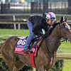 Summering Breeders' Cup Churchill Downs Chad B. Harmon