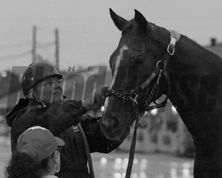Channel Maker Bill Mott Breeders' Cup Churchill Downs Chad B. Harmon Black & White