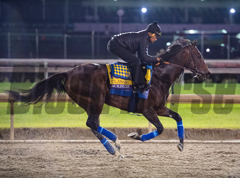 McKinzie takes to the track for morning exercise before the Breeders' Cup at Churchill Downs Wednesday Oct. 31, 2018 in Louisville, KY.  Photo by Skip Dickstein