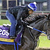 Midnight Bisou Breeders' Cup Churchill Downs Chad B. Harmon