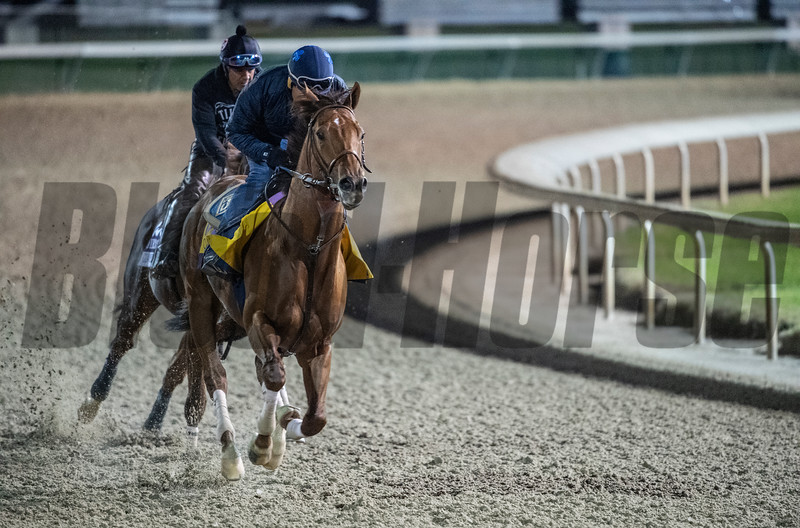 Accelerate out for morning exercise Tuesday Oct. 30, 2018 at Churchill Downs in preparation for the 2018 Breeders' Cup in Louisville, KY.  Photo by Skip Dickstein