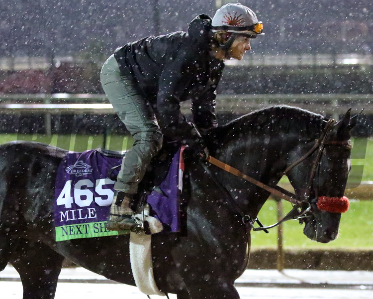 Next Shares Breeders' Cup Churchill Downs Chad B. Harmon
