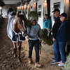 Promises Fulfilled walks past owners Robert and Deb Barons after his work Sunday Oct. 28, 2018 before the Breeders' Cup at Churchill Downs in Louisville, KY Photo by Skip Dickstein