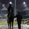 Scene Breeders' Cup Churchill Downs Chad B. Harmon
