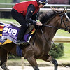 Legends of War Breeders' Cup Churchill Downs Chad B. Harmon