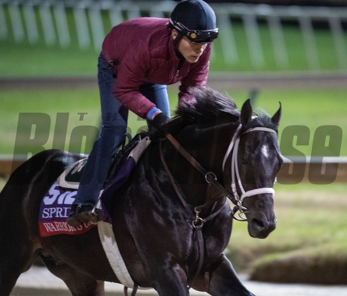 Warriors Club on track at Churchill Downs on Breeders' Cup week Monday October 29, 2018 in Louisville, KY.  Photo by Skip Dickstein