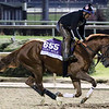 Giant Expectations Breeders' Cup Churchill Downs Chad B. Harmon