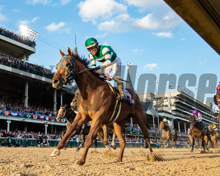 Accelerate ridden by Joel Rosario wins the 35th running of The Breeders' Cup Classic at Churchill downs Saturday Nov. 3, 2018.  Photo by Skip Dickstein