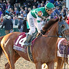 Accelerate Joel Rosario Breeders' Cup Classic Chad B. Harmon Churchill Downs