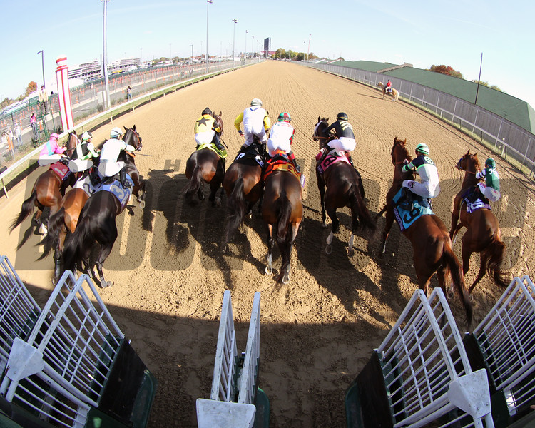 Starting Gate Remote Breeders' Cup Dirt Mile Churchill Downs Chad B. Harmon