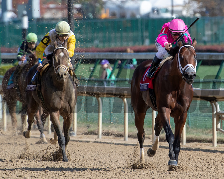 City of Light with Javier Castellano wins the Breeders' Cup Dirt Mile (G1) at Churchill Downs on November 3, 2018.<br /> Skip Dickstein Photo