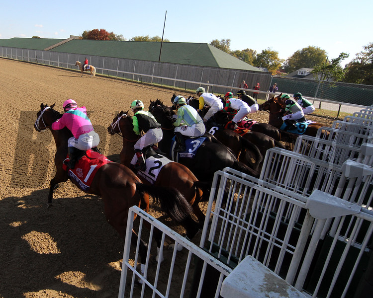 Starting Gate Remote Breeders' Cup Dirt Mile Churchill Downs Chad B. Harmon City of Light