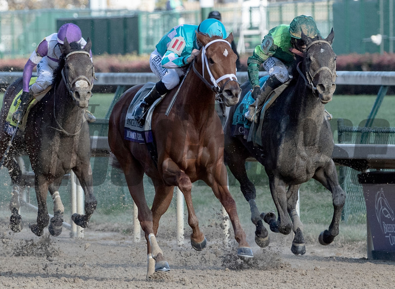 Monomoy Girl with jockey Florent Geroux wins the 35th running of the Breeders' Cup Distaff at Churchill Downs Saturday Nov. 3, 2018 in Louisville KY.  Photo by Skip Dickstein