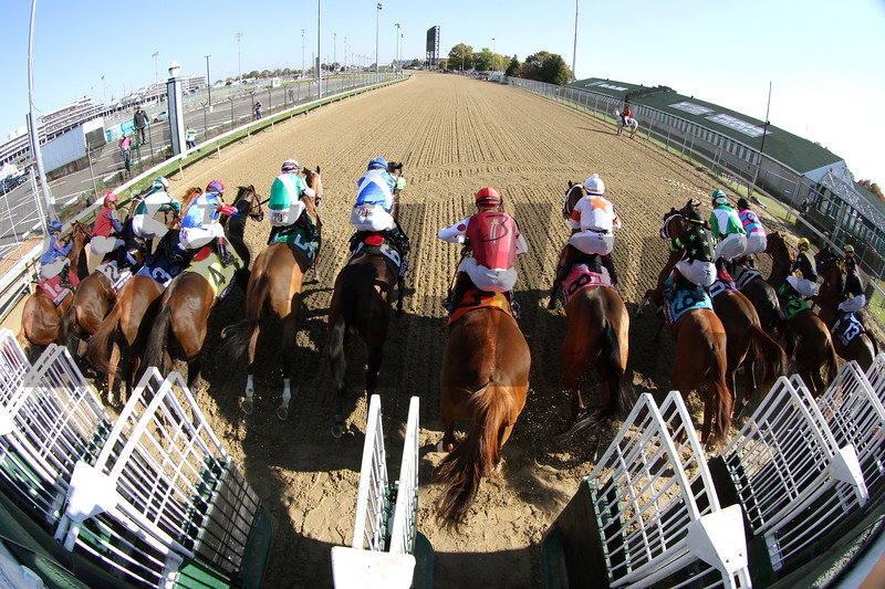 Starting Gate Remote Breeders' Cup Filly & Mare Sprint Churchill Downs Chad B. Harmon