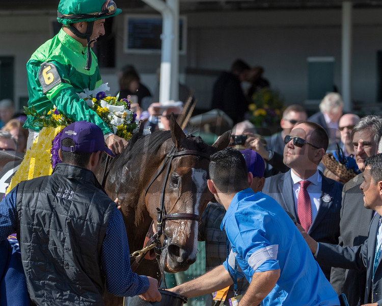 Sistercharlie (IRE) with John Velazquez wins the Maker's Mark Breeders' Cup Filly & Mare Turf (G1) at Churchill Downs on November 3, 2018.