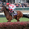 Newspaperofrecord Breeders' Cup Juvenile Fillies Turf Churchill Downs Chad B. Harmon