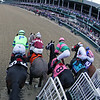 Starting Gate Remote Breeders' Cup Juvenile Fillies Churchill Downs Chad B. Harmon Jaywalk