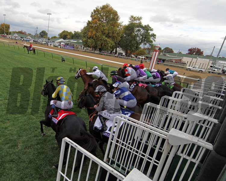 Starting Gate Remote Breeders' Cup Juvenile Turf Sprint Churchill Downs Chad B. Harmon