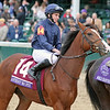Anthony Van Dyck Ryan Moore Breeders' Cup Juvenile Turf Churchill Downs Chad B. Harmon