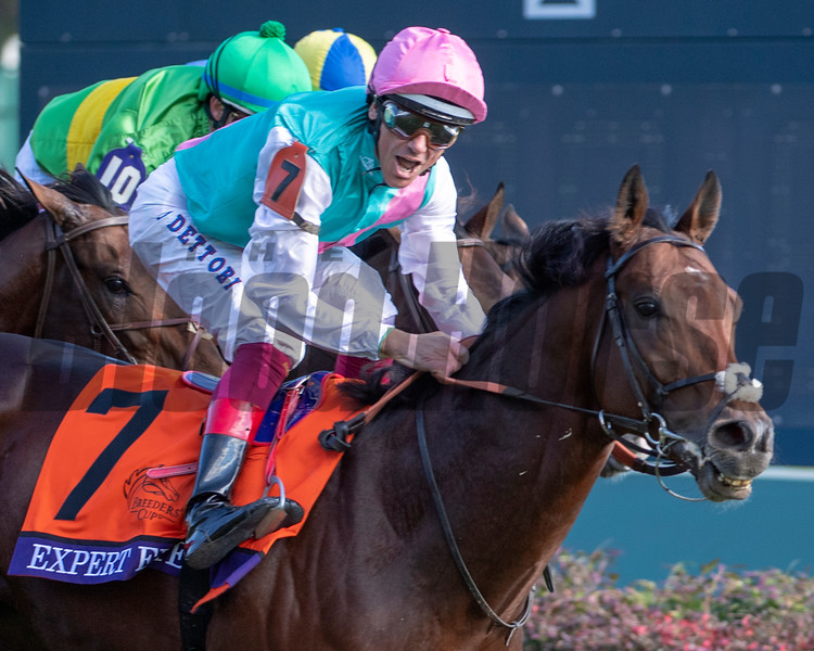 Expert Eye (GB) with Lanfranco Dettori wins the Breeders' Cup Mile (G1) at Churchill Downs on November 3, 2018.