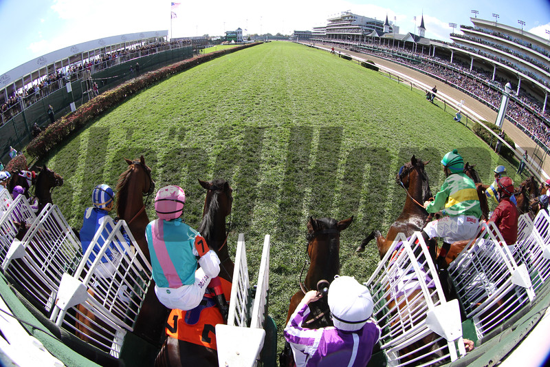 Starting Gate Remote Breeders' Cup Mile Churchill Downs Chad B. Harmon