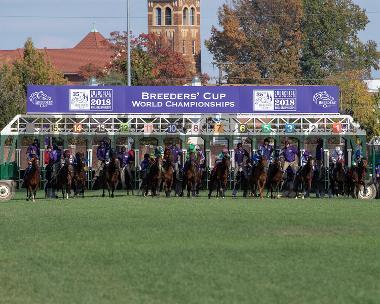 Start of the Breeders' Cup Mile (G1) at Churchill Downs on November 3, 2018. Expert Eye (GB) with Lanfranco Dettori wins.