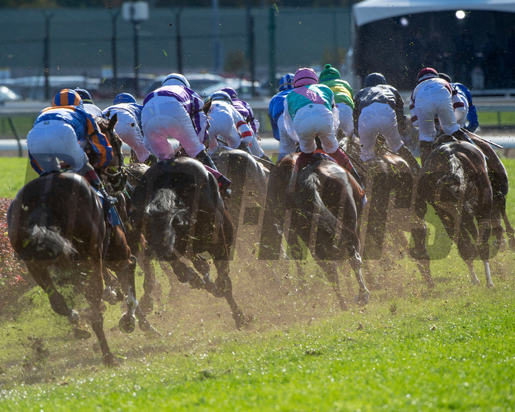 The field enters the first turn in the Breeders' Cup Mile (G1) at Churchill Downs on November 3, 2018.