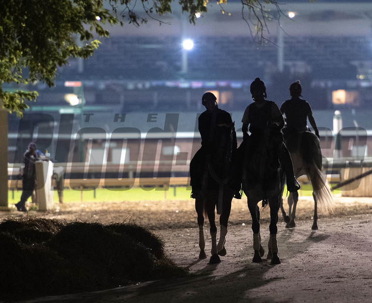 Shadowing figures head to the track for morning exercise at Churchill Downs Wednesday Oct. 31, 2018 in Louisville, KY.  Photo by Skip Dickstein