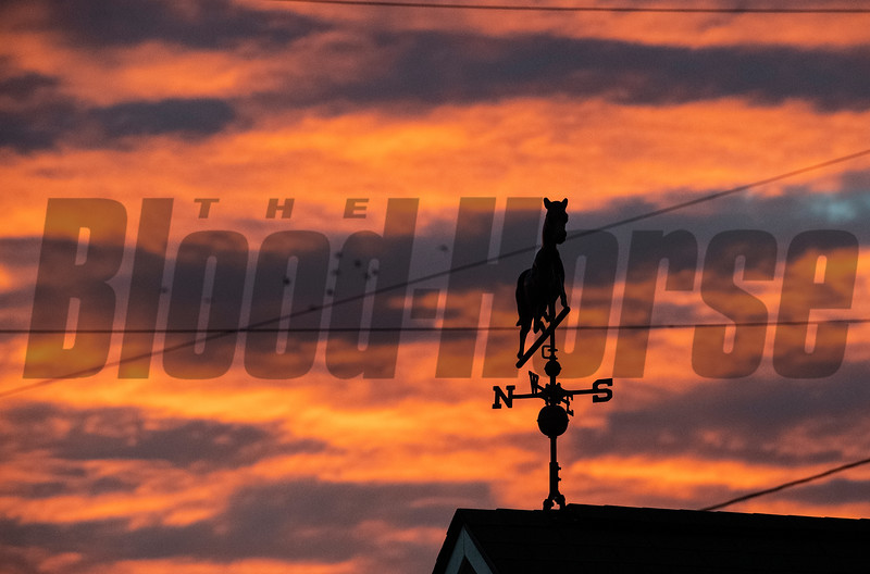 Beatutiful morning Sunday Oct. 28, 2018 before the Breeders' Cup at Churchill Downs in Louisville, KY Photo by Skip Dickstein