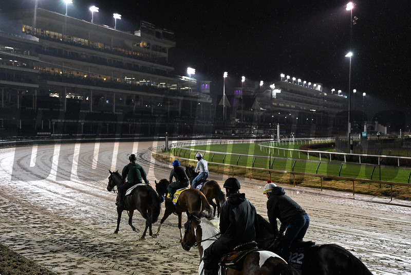 Breeders' Cup entrants move out through rain and mud for their morning exercise Thursday Nov. 1, 2018 at Churchill Downs the home of the 2018 Breeders' Cup in Louisville, KY.  Photo by Skip Dickstein