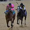 Game Winner Knicks Go Breeders' Cup Juvenile Churchill Downs Chad B. Harmon