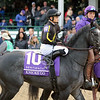 Knicks Go Breeders' Cup Juvenile Churchill Downs Chad B. Harmon