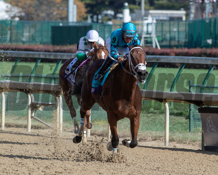 Roy H with Paco Lopez wins the TwinSpires Breeders' Cup Sprint (G1) at Churchill Downs on November 3, 2018.