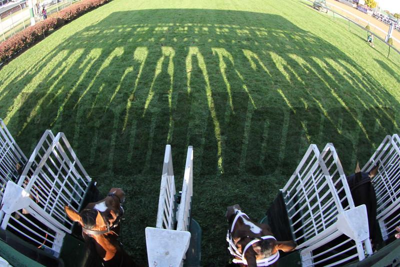 Starting Gate Remote Breeders' Cup Turf Churchill Downs Chad B. Harmon