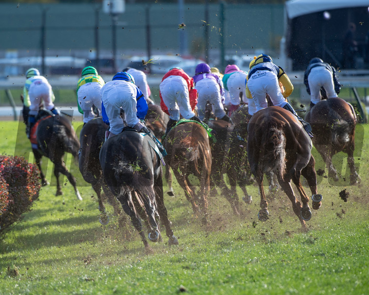 The field rounds the first turn in the Longines Breeders' Cup Turf (G1) at Churchill Downs on November 3, 2018.