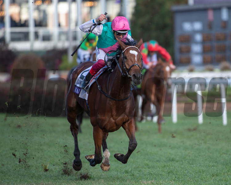 Enable (GB) with Lanfranco Dettori wins the Longines Breeders' Cup Turf (G1) at Churchill Downs on November 3, 2018.