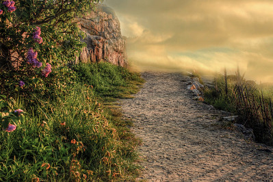 Path of Enchantment