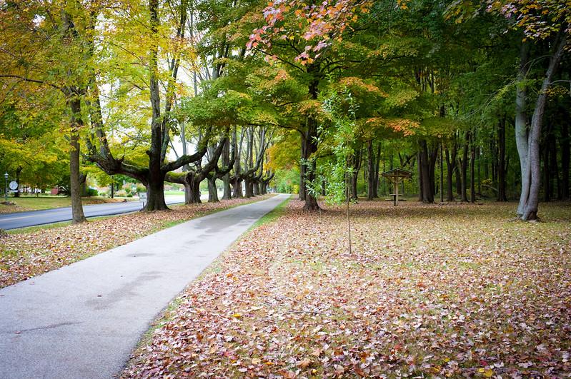 Dobbs Park