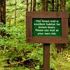 Trail at Sitka Raptor Rehabilitation Center