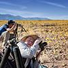 Death Valley National Park Super Bloom