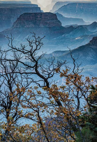 North Rim of Grand Canyon